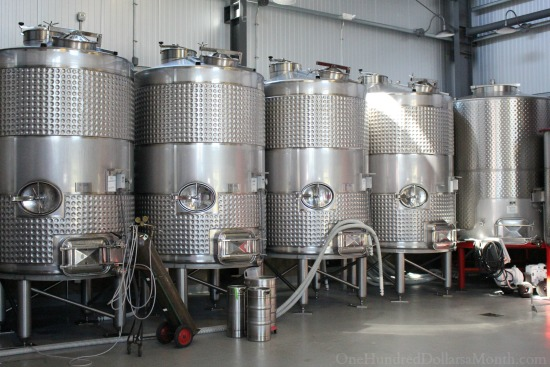 fermentation b cellars