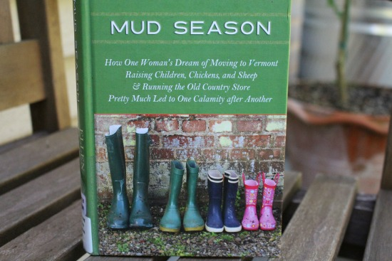 mud-season