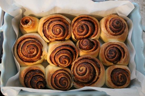 cinnamon-rolls