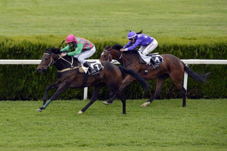 Naas horse racing