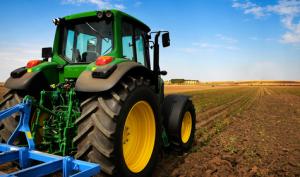 Israel Farming Marijuana