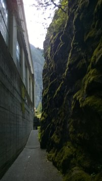 Behind the Gorge powerhouse. The moss covered side is bedrock. The roots of the mountain barely tamed for this buildings perch.