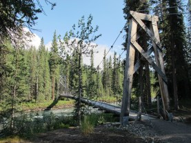 Suspension footbridge over Hines Creek.