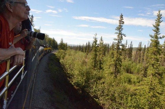 The train slowed to allow folks to see a Moose and her calf that were close to the train.