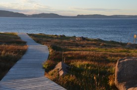 Nice boardwalks are pleasant to walk on and preserve the relatively fragile grasses.