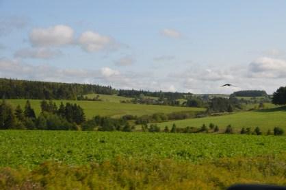 Back roads on PEI, farming communities.