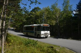 These buses provide transportation around the park, particularly useful for hiking and not having to make a loop.