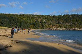 Lots of folks here to check out the sandy beach, but not quite warm enough to entice swimming.
