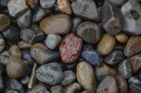 Quite an assortment of stones