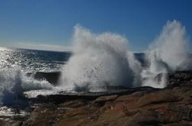 Acadia_042