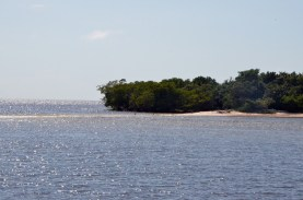 Barrier Islands have sand below