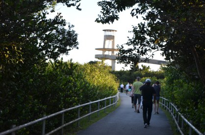Heading for the viewing platform.