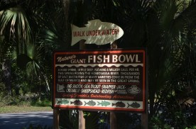 "Historical sign. ""Giant Fish Bowl"". Currently just outside the park."