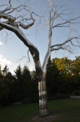 """""""Graft"""" at the National Sculpture Garden."""