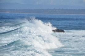Monterey_016