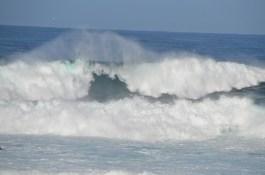 Monterey_019