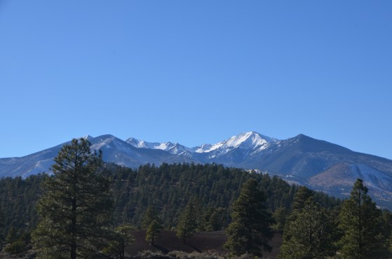 Snow on the San Francisco Peaks, cinder cone in the foreground.