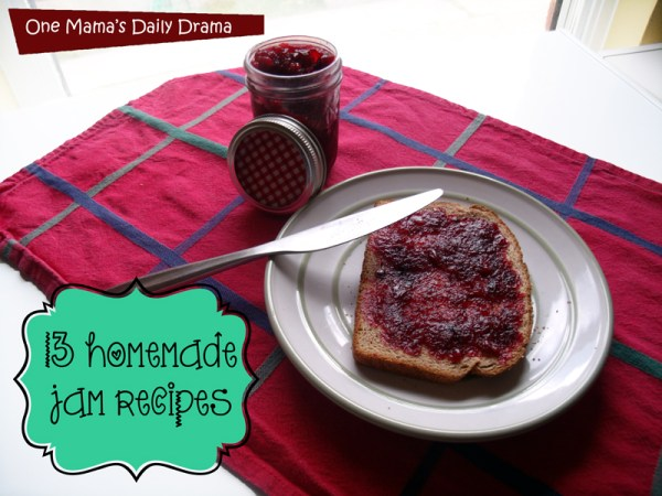 13 Homemade jam recipes | One Mama's Daily Drama --- Time to pick up some fresh spring/summer produce and get cooking!