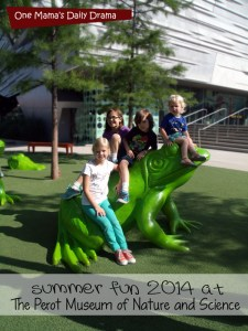 Visit the Perot Museum of Nature and Science in Dallas for summer family fun | One Mama's Daily Drama