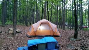 10 essentials for a fun family camping trip from OneMamasDailyDrama.com