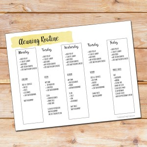 Free printable cleaning routine checklist