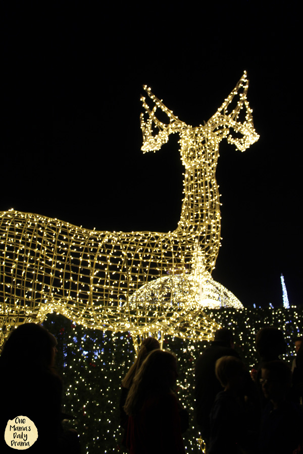 A reindeer peeks over the lighted hedges in the maze at Enchant Christmas.