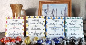 Hogwarts Mother's Day printables and candy sorted by house colors