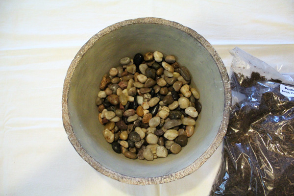 Fill the bottom two inches of the container with small river rocks or gravel.