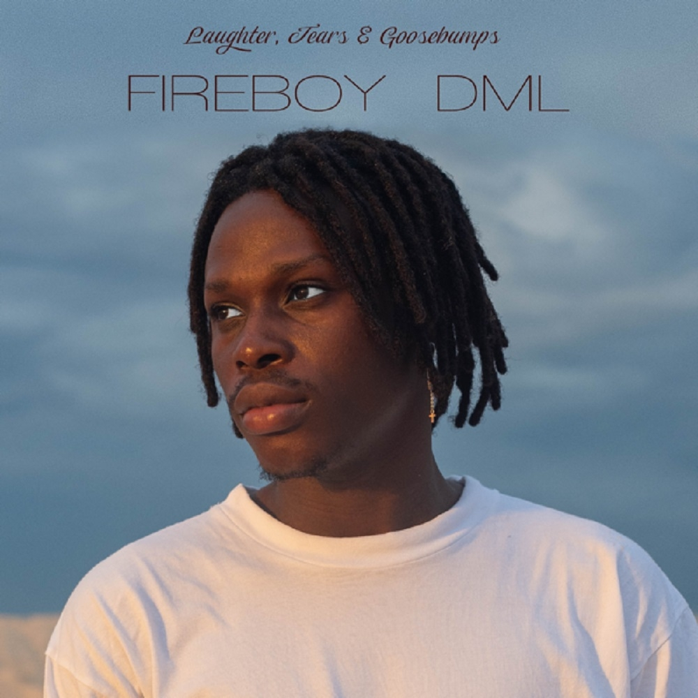 Fireboy DML – High on Life