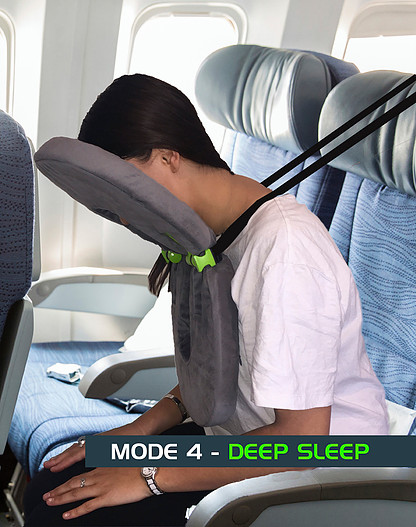 Does This Toilet SeatShaped Travel Pillow Cross The Line