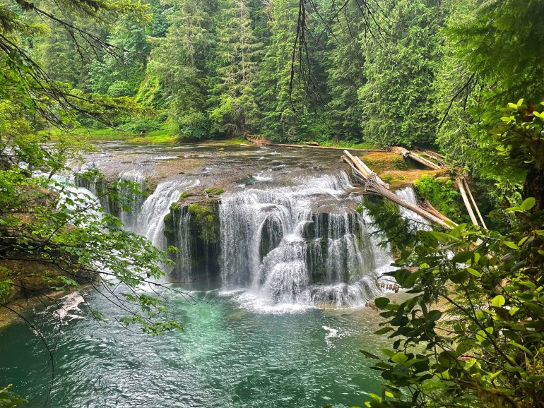 A Fan of Waterfalls....at Lower Lewis Falls in Washington State