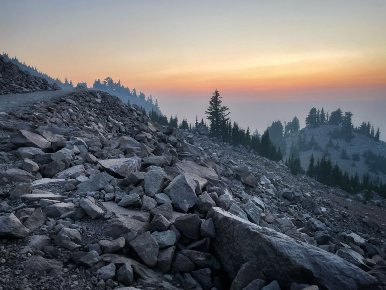 Thursday Tree Love: In the Distance at Watchman Trail, Crater Lake