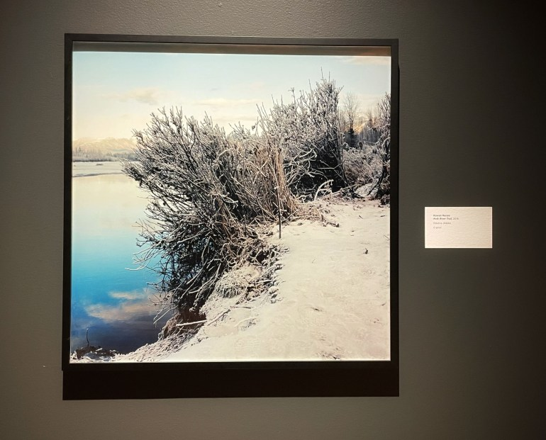 Rowan Renee: Dead Reckoning at the Anchorage Museum
