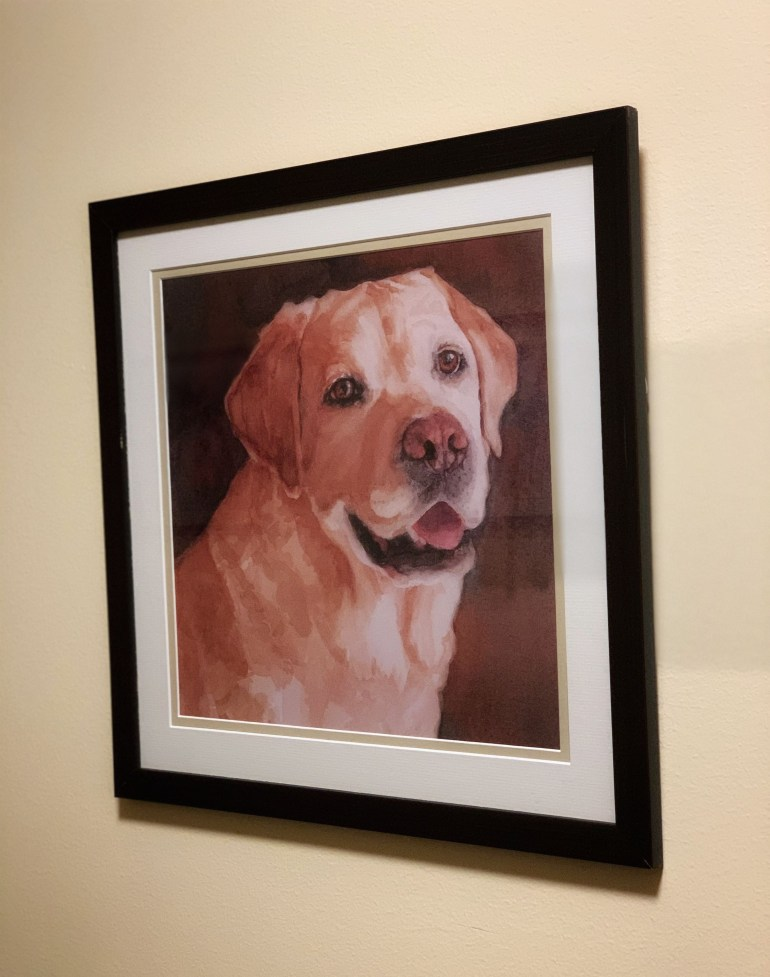 Adorable Dog Art at the Inn at 500 Capitol Hotel in Boise, Idaho