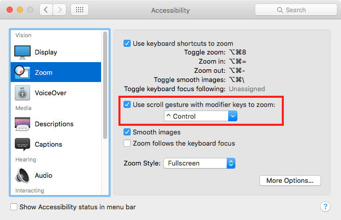 Accessibility/Zoom
