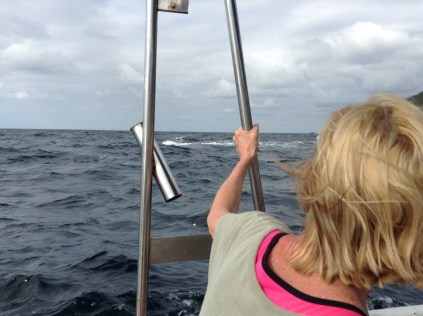 Day trip with Granny and up-close encounters with WHALES!!!