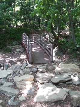 Checkpoint #1: There are two cute little bridges near the beginning of your hike