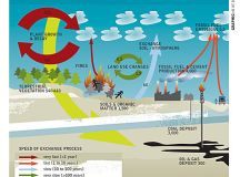MY WORLD:WELCOME TO IT: Acidifying Oceans could hit ...