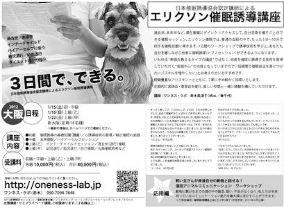 2011年1月、3日でできる!大阪:エリクソン催眠誘導講座