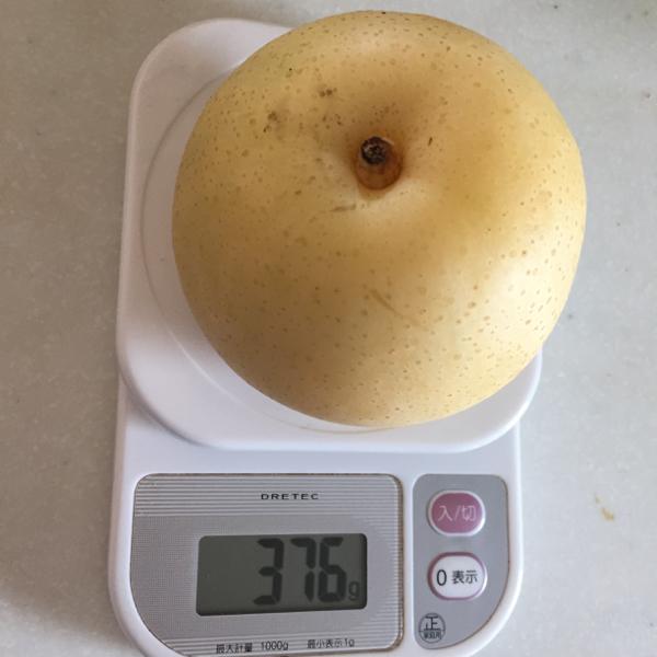 血糖値測定[03]梨