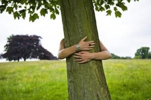 tree-hugging0726