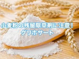 小麦粉残留除草剤