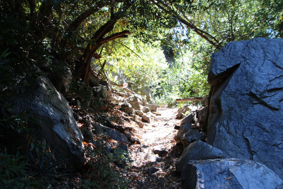 cold brook, canyon, los angeles, national forest, rv, camping, campground