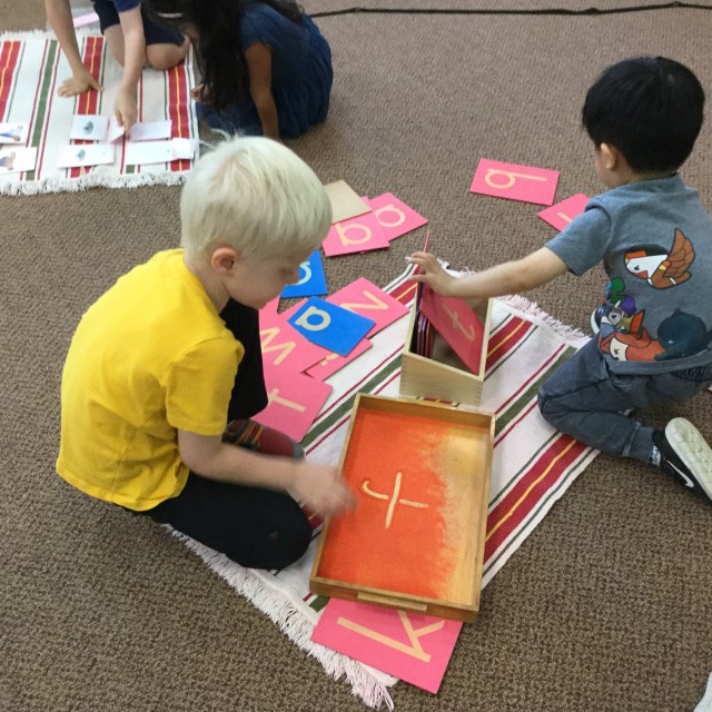 Room 4: Butterfly Work Time (Sept 2018)