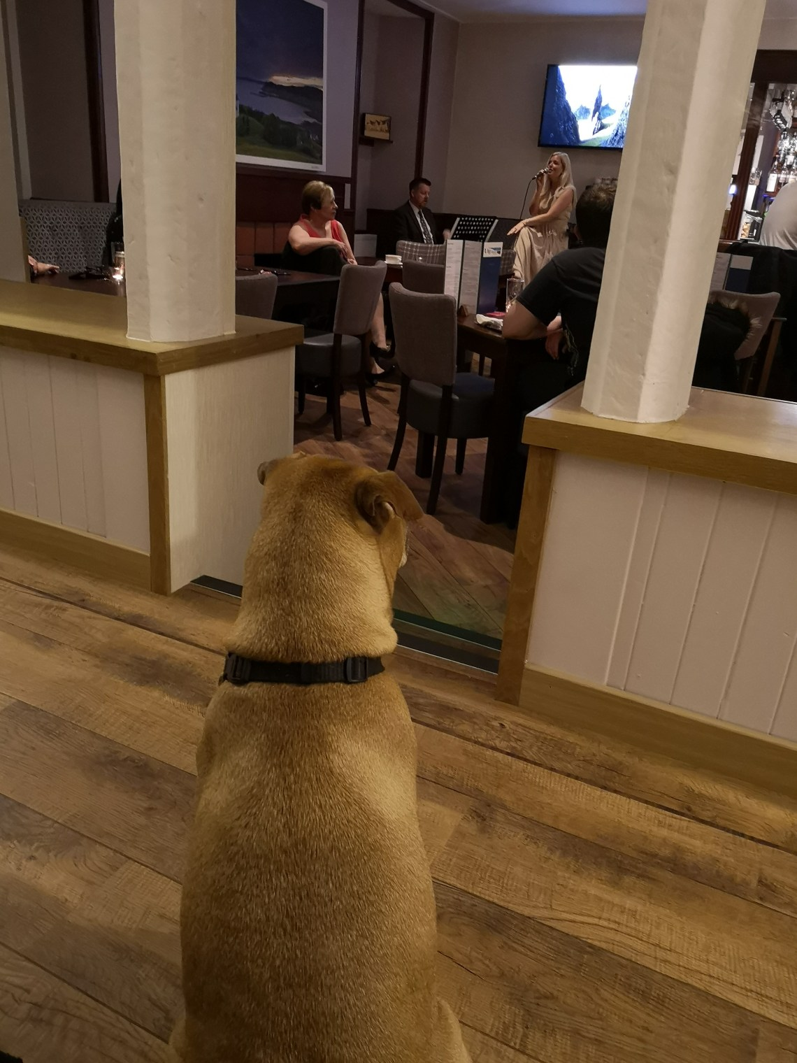 Uig hotel is dog-friendly (Isle of Skye)