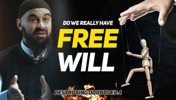 Do Human Beings really have Free Will?