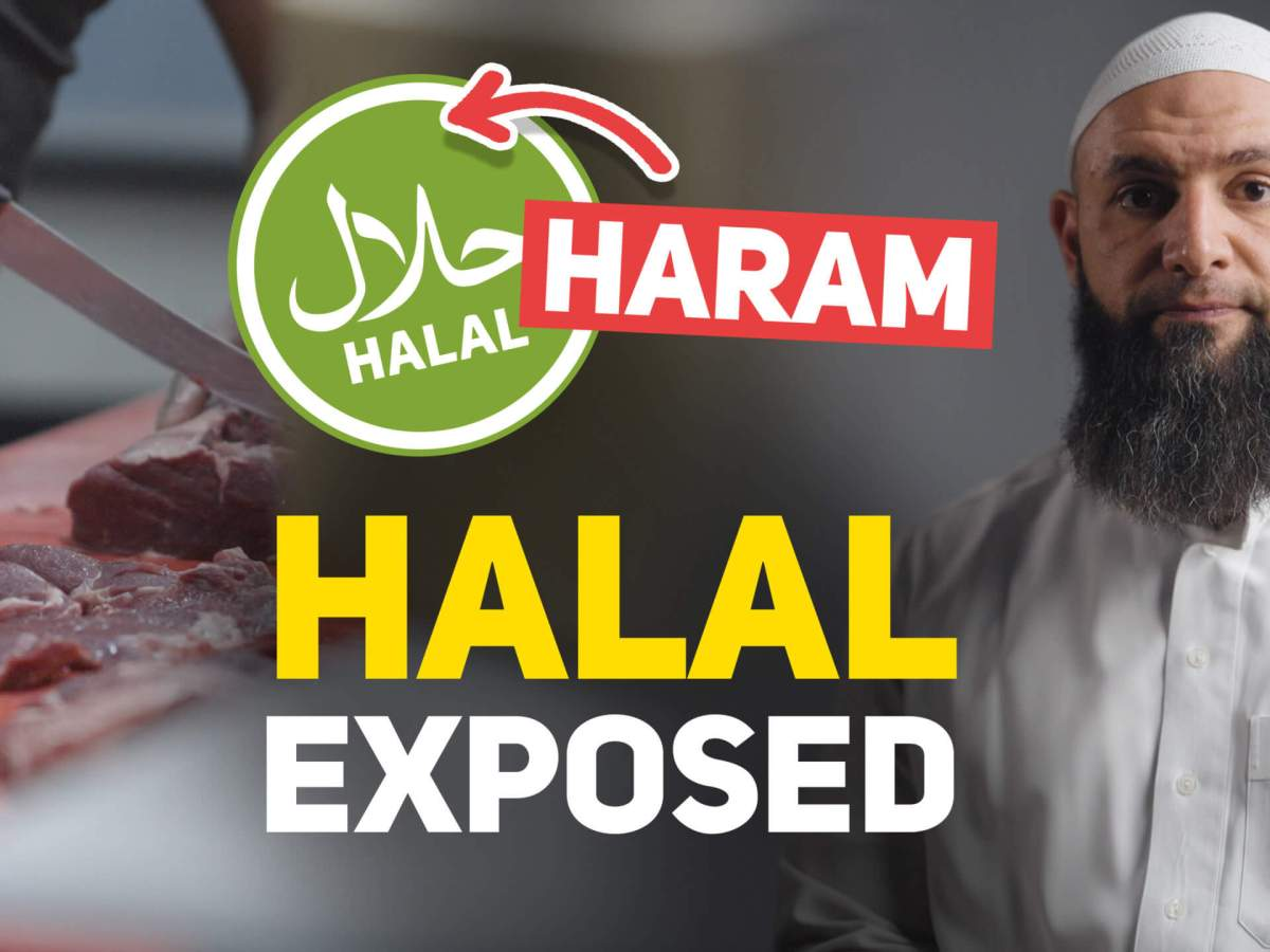 Ruffled Feathers - Exposing the Halal Industry