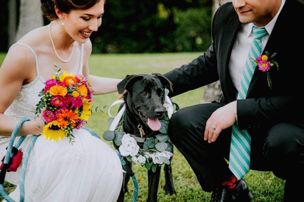 Pet Friendly Wedding Miami
