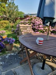 Mark - My garden in Essex, UK