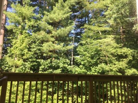 Linda - Southern New Hampshire